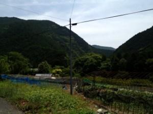 写真 和歌山県②
